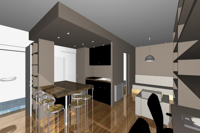 Réaménagement d'un petit appartement parisien