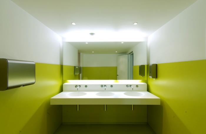 TOUR DE BUREAUX À NANTERRE - RÉHABILITATION D'UN IGH : Toilettes