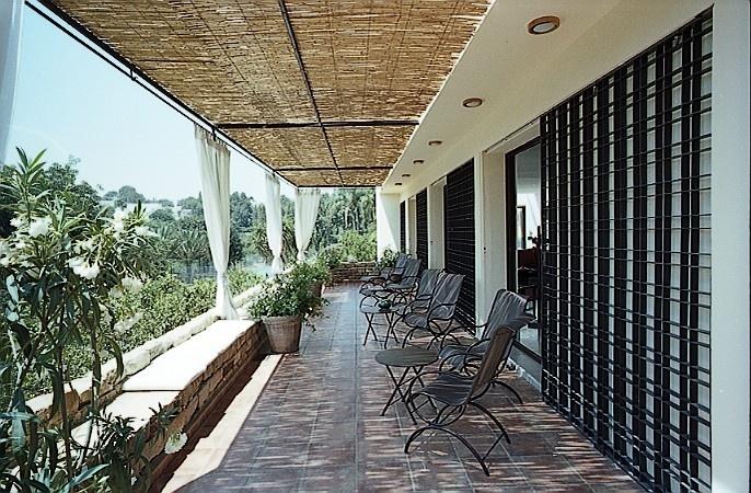 Une maison unifamiliale à Alger : terrasse au r+1 sur les orangers