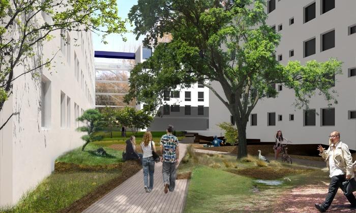 Concours REHA 2 : Lille: nouveaux espaces