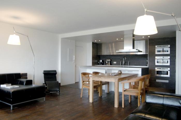Architectes appartement en open space paris for Salon open space