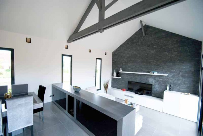 Maison contemporaine MCY (77) : image_projet_mini_77506