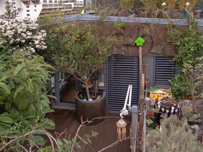 Surélevation d'un duplex et création d'une terrasse : terrasse 2