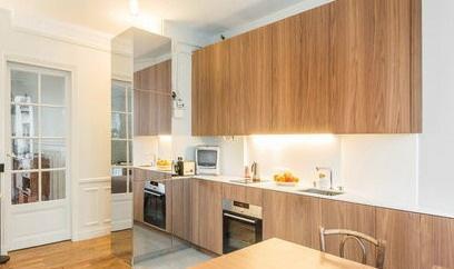 Rénovation d'appartements parisiens : image_projet_mini_99493